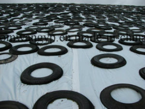 8m Width White/Black Silage Films, Silage Sheet pictures & photos
