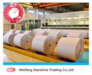 High Quality Light Weight Coated Paper of Jinzhou