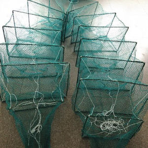 High Quality Cage Nets pictures & photos