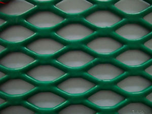 Expanded Metal Mesh/Expanded Metal (fencing mesh) pictures & photos