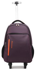 Simple Trolley Backpack Laptop Luggage Bag for Business (ST6244) pictures & photos