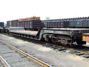Railway Express From Shenzhen to Dushanbe Tajikistan pictures & photos