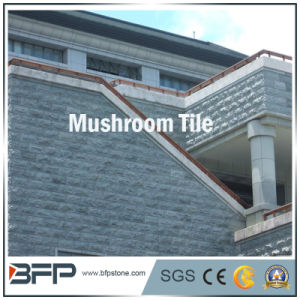 Yellow/Grey/Rusty Color Mushroom Slate Tile for Wall Tiles pictures & photos