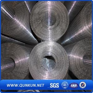 10 Gauge Galvanized Welded Wire Mesh for Construction Using pictures & photos