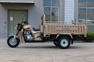 Famous 150cc 3 Wheel Cargo Tricycle for Shipment pictures & photos
