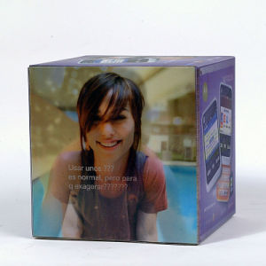 2015 Hot Selling 3D Packaging Box pictures & photos