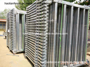 40X80mm Oval Pipe Livestock Panel and Cattle Panels pictures & photos