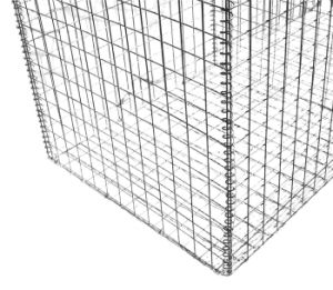 Welded Gabion Basket for Wall Using pictures & photos