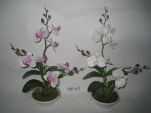 2012 New Design Hot Three Stems Artificial Orchid with White Plat Pot (MH-011)