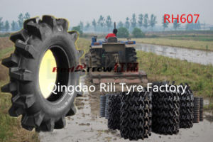 Rice Paddy Tire (750-16 650-16 600-14 600-12) for Water Farm pictures & photos