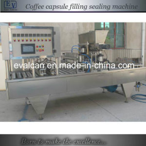 Automatic Custom Coffee Capsule Packing Machine pictures & photos