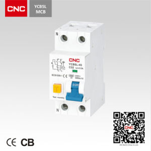 Hot Product Residual Current Circuit Breaker (YCB5L) pictures & photos