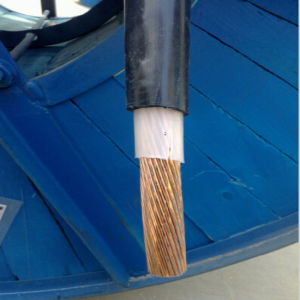 600/1000V, Power Cable, Single Core, XLPE Insulated, PVC Sheathed, 1X300mm2 pictures & photos