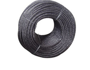 Electro or Hot DIP Galvanized Fishing Rope 6X24+7FC pictures & photos