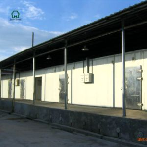Steel Structure Cold Storage for Sale pictures & photos