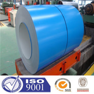 India Ral 5012 PPGI Steel Coil