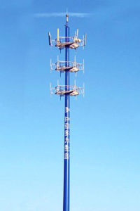 Bionic Tower (Camouflage tower) pictures & photos