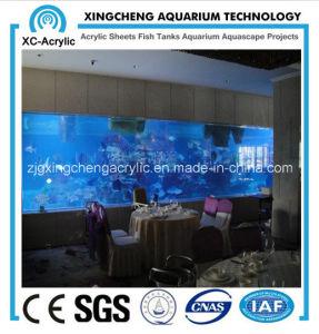 Large Wall Hanging Acrylic Aquarium pictures & photos