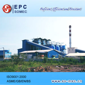 Equipment Supplier of Cogeneration Plant pictures & photos