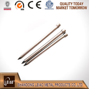 Common Round Wire Nails pictures & photos