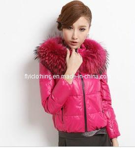 Ladies Down Coat with Fur (YR0019)