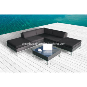 Rattan Furniture Sofa Set for Outdoor with Aluminum Feet (9509AU) pictures & photos