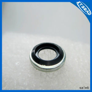 High Quality Self Centering Bonded Seal All Size Available pictures & photos