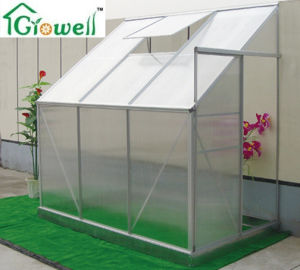 Lean-to Greenhouse for Limited Space (LSP series) pictures & photos