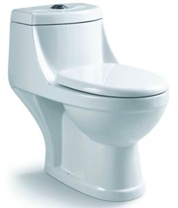 One Piece Vitreous China Washdown Toilet (S7558) pictures & photos