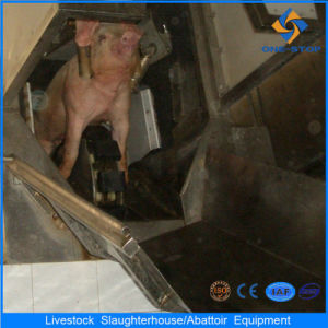 Ce Pig Abattoir Machine in Slaughterhouse pictures & photos