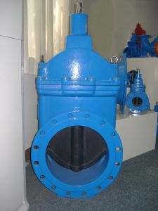 Resilient Seated Wedge Gate Valve pictures & photos