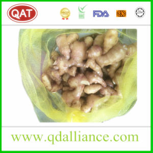 Fresh Ginger Exporting to Pakistan pictures & photos