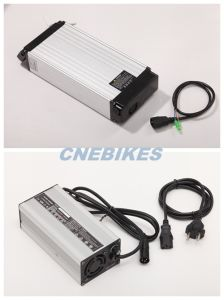 48V 15ah Electric Bike Rack Type LiFePO4 Battery with Charger pictures & photos