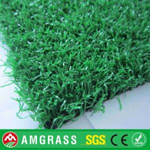 Certified Yarn for Synthetic Golf Grass, Putting Green Turf pictures & photos