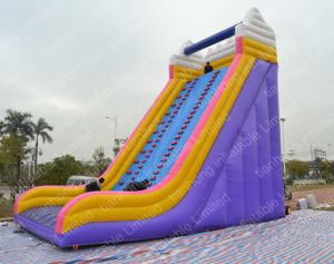 Giant Cheap Inflatable Water Slide with Pool pictures & photos