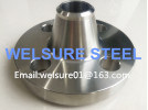 Welding Neck Flange Stainless Steel 316L