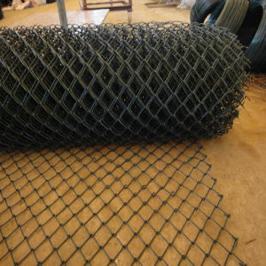 Iron Wire Chain Link Fence PE Coating pictures & photos