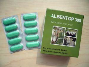 Veterinary Drugs of Albendazole Bolus 300mg pictures & photos