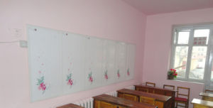 Best Heating Effect - Infrared Electric Heating Panels\Room Heater pictures & photos