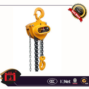 Chain Block 10 Ton Capacity, High Quality, G80 Load Chain (HS-CB) pictures & photos