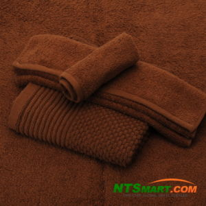 Cotton Towel (N000020806-808, N000020829) pictures & photos