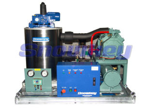 Sea Water Flake Ice Machine (SFM10A) pictures & photos