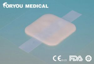 Piece of Medical Hydrogel Dressing pictures & photos