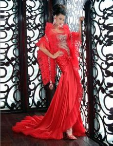 Evening Dress (BR0016) pictures & photos