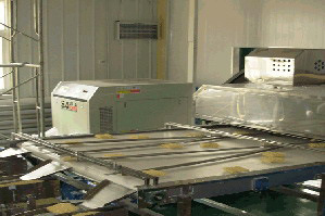 Finish-Product Conveyor (LY765-6)