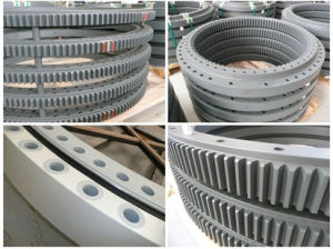 Professional Manufacturer in Sirca Slewing Bearings (2CE. 050.00) pictures & photos