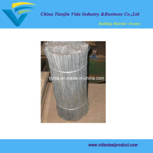 Galvanized Cut Wire pictures & photos