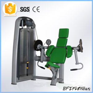 Commercial Gym Equipment for Sale, Fitness Manufacture in China, Sports Goods Bft-2003 pictures & photos