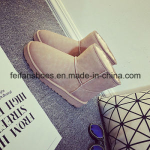 Low-Cut Women Warm Snow Boots with Low Prices (FF-5) pictures & photos
