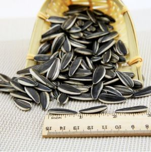 Hot Sale High Quality Organic Sunflower Seeds 5009 pictures & photos